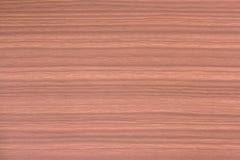 Painel de madeira Fotos de Stock Royalty Free