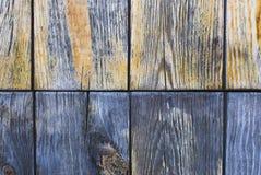 Painel de madeira Fotografia de Stock Royalty Free