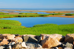 Paines State Park, Cape Cod Stock Images
