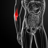 Painful elbow Royalty Free Stock Image