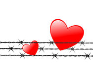 Painful heart. Vector illustration of hearts in barbed wire Royalty Free Stock Photo