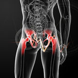 Painful hip joint Stock Images