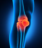 Painful Knee. Illustration of Painful Knee. 3D render Royalty Free Stock Photography
