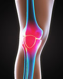 Painful Knee Illustration. On white background. 3D render Stock Image