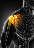 Painful Shoulder Illustration. 3D render Royalty Free Stock Photography