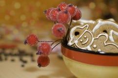 Pains d'épice de Noël avec la décoration des ligts colorés Photographie stock libre de droits