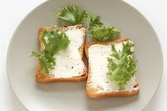 Pains grillés avec le fromage fondu Images stock