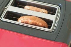 Pains grillés dans le pair de grille-pain  Images libres de droits