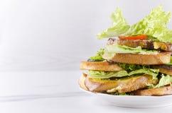 Pains grillés préparés frais avec la tomate, le lettce et le concombre L'espace vide pour votre conception image stock