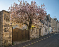 Painswick a Cotswold Street Scene in the Spring Stock Photography
