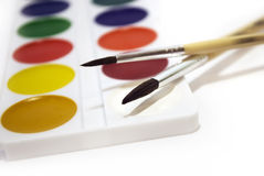 Paint. Color paint and two brushnes Stock Photos