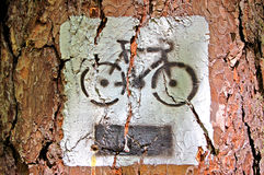 Paint bicycle. Sign on tree Stock Photos