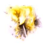 Paint black, yellow splash ink stain watercolour Stock Photo
