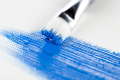 Paint and Brush. Art paint brush and blue acrylic paint Royalty Free Stock Image