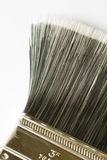 Paint Brush. Closeup of the bristles of a new 3 inch paintbrush stock image