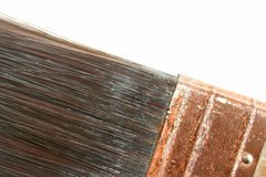 Paint brush. Close-up of a paint brush Royalty Free Stock Photo