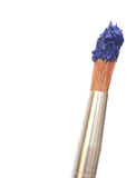 Paint brush with blue color Stock Image