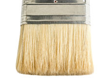 The paint brush Royalty Free Stock Image