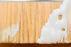 Paint brush close-up of white paint smeared Royalty Free Stock Image