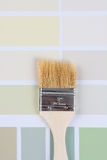 Paint Brush on Color Samples Royalty Free Stock Photos