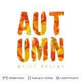 Autumn fall bright orange leaves text. Paint brush silhouette filled with leaves pattern Stock Photography