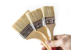 Paint brush unused for wood and metal on the white background Stock Image