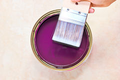 Paint brush. Woman hand holding paint brush with purple color scene background Royalty Free Stock Image