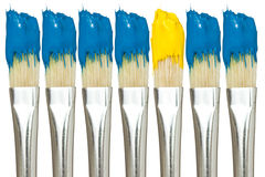 Paint brushes with blue and yellow paints Stock Photos
