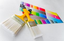 Paint brushes with color guide Stock Image