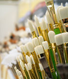 Paint Brushes on Display Royalty Free Stock Photo
