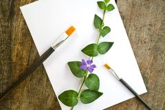 Paint brushes, flower and white paper Stock Photos