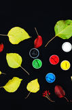 Paint buckets. Paint in banks, on black background. Preparation for painting Autumn leaves on black background. Viburnum branches. Stock Photos