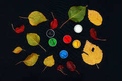 Paint buckets. Paint in banks, on black background. Preparation for painting Autumn leaves on black background. Viburnum branches. Royalty Free Stock Photos