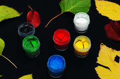 Paint buckets. Paint in banks, on black background. Preparation for painting Autumn leaves on black background. Viburnum branches.