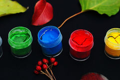 Paint buckets. Paint in banks, on black background. Preparation for painting Autumn leaves on black background. Viburnum branches. Stock Photography