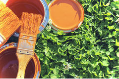 Paint cans, brushes, bright orange color. All on a background of green grass stock images