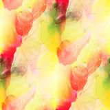 Paint colorful pattern water texture abstract color red, yellow, Stock Images