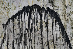 Paint-dripped Grungy Plaster Wall Royalty Free Stock Photo