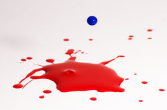 Paint drop. Red and blue paint drop pre collision Royalty Free Stock Photos