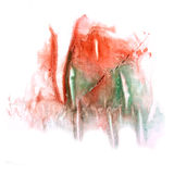 Paint green,  red  splash ink stain watercolour Royalty Free Stock Image