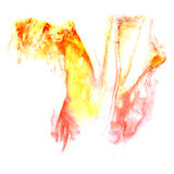 Paint orange,  red  splash ink stain watercolour Royalty Free Stock Images
