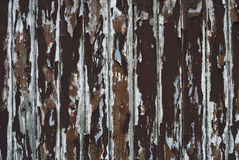Paint peeling wooden old wall Royalty Free Stock Images