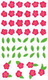Paint pink flower green leaf Royalty Free Stock Image