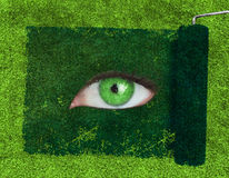 Paint roller revealing a green eye Royalty Free Stock Photo
