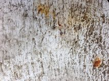 Paint and rust background Royalty Free Stock Photos