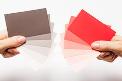 Paint sample cards. Female hands with the paint sample cards Stock Photo