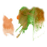 Paint splash color brown green ink blue red watercolor isolated stroke splatter watercolour aquarel brush Royalty Free Stock Image