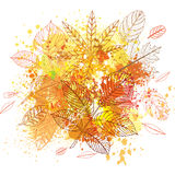 Paint splashes and autumnal leaves Royalty Free Stock Image
