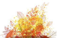 Paint splashes and autumnal leaves Stock Images