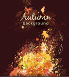 Paint splashes and autumnal leaves Stock Photography